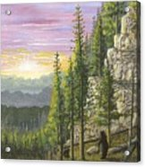 Bear Mountain Acrylic Print