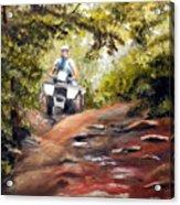 Bear Wallow Rider Acrylic Print