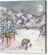 Bears In Winter Acrylic Print