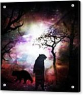 Bears Night Out Acrylic Print