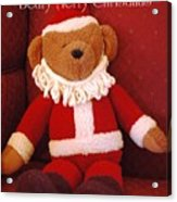 Beary Merry Christmas  Acrylic Print