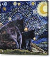 Beary Starry Nights Too Acrylic Print