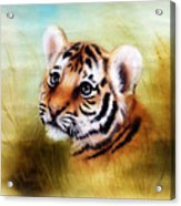 Beautiful Airbrush Painting Of An Adorable Baby Tiger Head Looking Out From A Green Grass Surroundin Acrylic Print