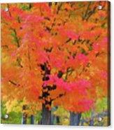 Beautiful Autumn Day Acrylic Print