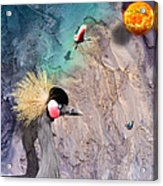 Beautiful Birds Acrylic Print