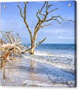 Beautiful Botany Bay Beach  Acrylic Print