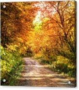 Beautiful Fall Day Acrylic Print