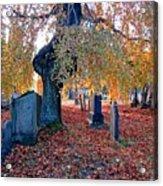 Beautiful Historic Camp Hill Cemetery Halifax Nova Scotia Acrylic Print