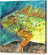 Beautiful Monster Acrylic Print