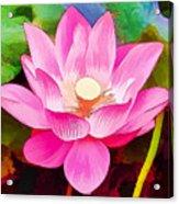 Beautiful Pink Lilies Acrylic Print