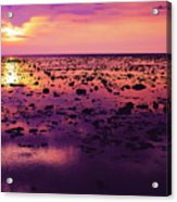 Beautiful Purple Sunset During Tide Shows Up Rocky Beach Acrylic Print