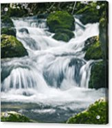 Beautiful River In Forest Acrylic Print