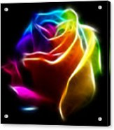 Beautiful Rose Of Colors No2 Acrylic Print by Pamela Johnson
