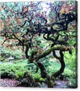Beautiful Japanese Garden,butchart Gardens,victoria,canada 2. Acrylic Print