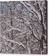 Beautiful Snow Acrylic Print