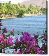 Beautiful Waikiki Acrylic Print