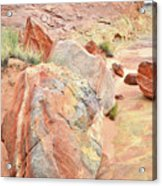 Beautifully Colored Boulders In Wash 3 - Valley Of Fire Acrylic Print