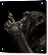 Beauty And The Beast Acrylic Print