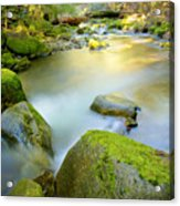 Beauty Creek Acrylic Print