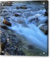 Beauty Creek Acrylic Print by Larry Ricker