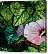 Beauty In Bloom Acrylic Print