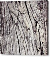 Beauty In The Cracks Of Old Wood Acrylic Print