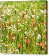 Beauty Is Spring Acrylic Print