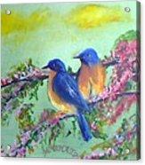 Beauty Of Birds Acrylic Print