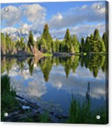 Beaver Dam Reflection In Grand Teton Np Acrylic Print