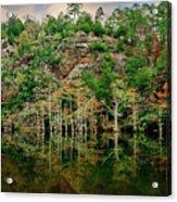 Beaver's Bend Overlook Acrylic Print