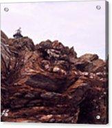 Beavertail Rock Formations Acrylic Print