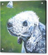 Bedlington Terrier With Butterfly Acrylic Print
