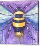 Bee For A Little Bee Acrylic Print