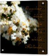 Bee In Crape - Verse Acrylic Print