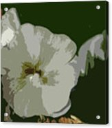 Bee In The Hollyhock Acrylic Print
