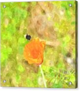 Bee My Flower Acrylic Print