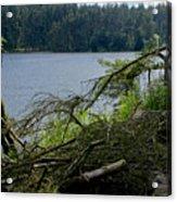 Beecraigs Loch. Acrylic Print