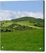 Beecraigs Hills. Acrylic Print
