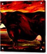 Beef Holocaust IIi Acrylic Print