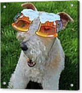 Beer Goggles Acrylic Print