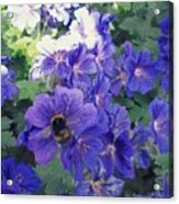 Bees And Flowers Acrylic Print