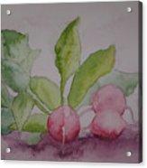 Beets Acrylic Print