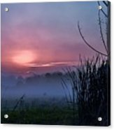 Before Dawn Acrylic Print