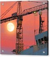 Behind The Crane A Hunter's Moon Rises II Acrylic Print