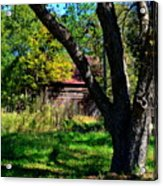 Behind The Old Oak Tree Vertical Acrylic Print