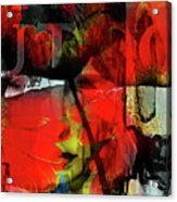 Behind The Poppies Acrylic Print
