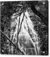 Behind The Tree-bw Acrylic Print