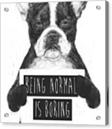 Being Normal Is Boring Acrylic Print