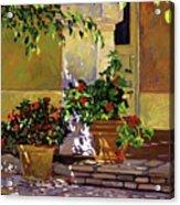 Bel-air Patio Steps Acrylic Print by David Lloyd Glover