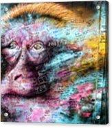 Belfast Mural - Monkey Face - Ireland Acrylic Print